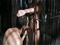Twink man sucks poor lad in cage